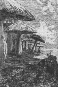 """... les illustrations d'Edouard Riou pour Jules Verne (""""Voyage au centre de la Terre"""", 1864)"""